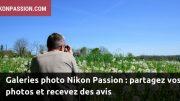Galeries photo Nikon Passion