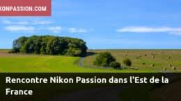 sortie photo Nikon Passion dans l'Est de la France