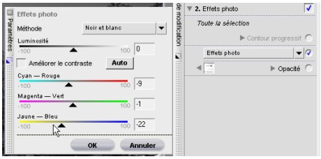 tutoriel nikon capture NX