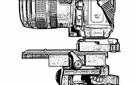 guide pratique de macro photographie