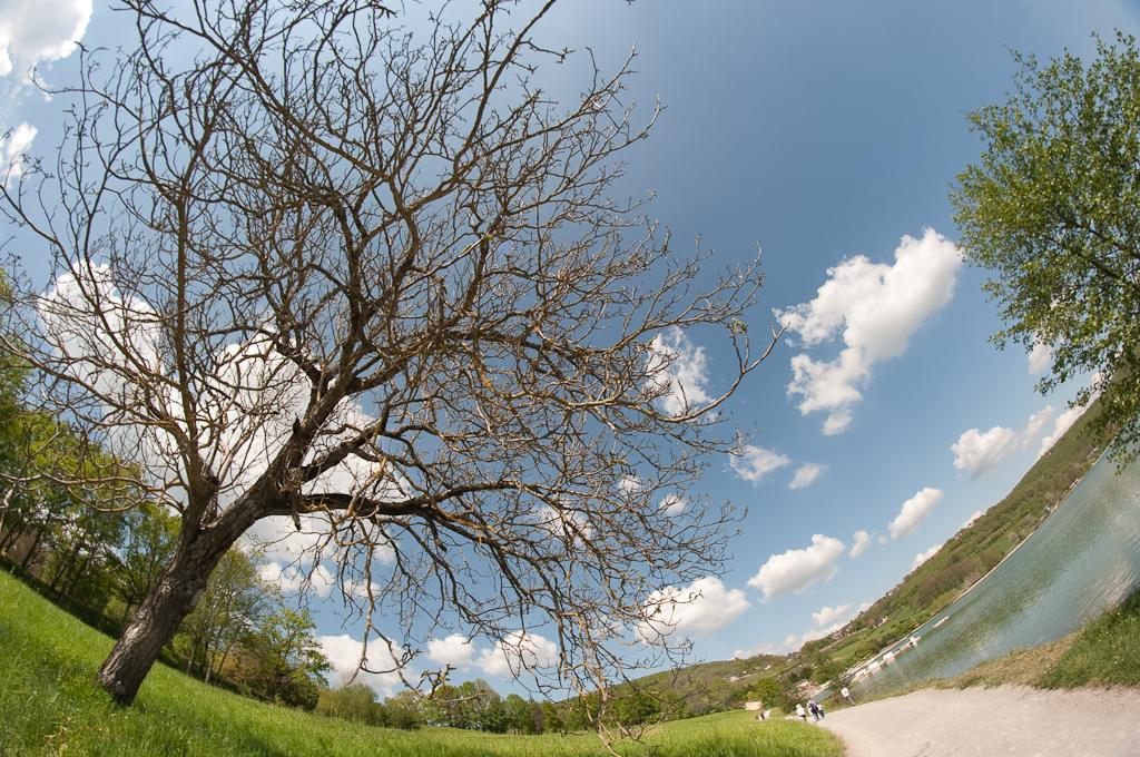 Test Samyang 8mm fisheye pour Nikon Canon Pentax et Sony