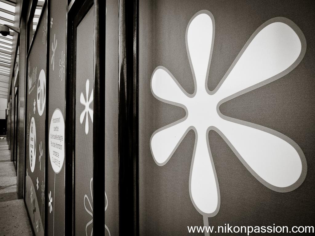 test Nikon P7000