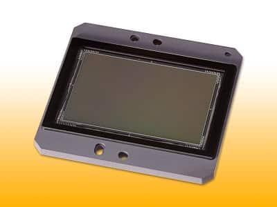 capteur Sony APS-C 24Mp pour Nikon D400