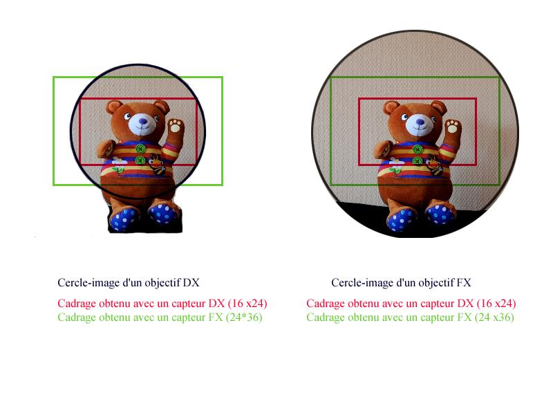 tableau de compatibilité entre format DX et format FX Nikon