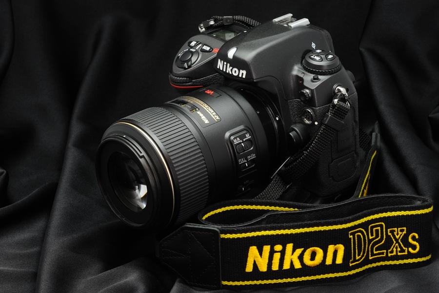 Vue du Nikon D2XS