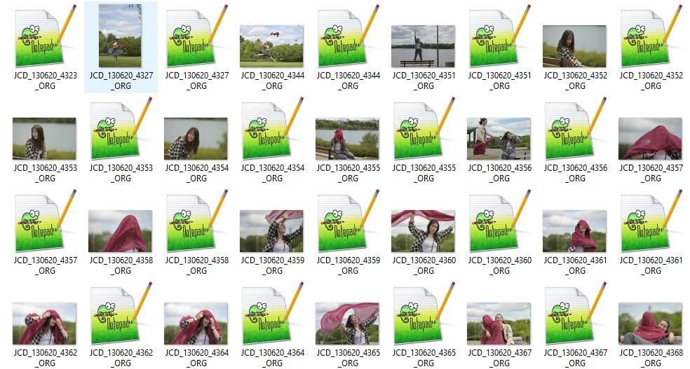 fichiers RAW Nikon (Nikon Electronic Format)) listés dans l'explorateur Windows