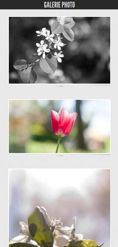 exemple de galerie photos sur Tumblr
