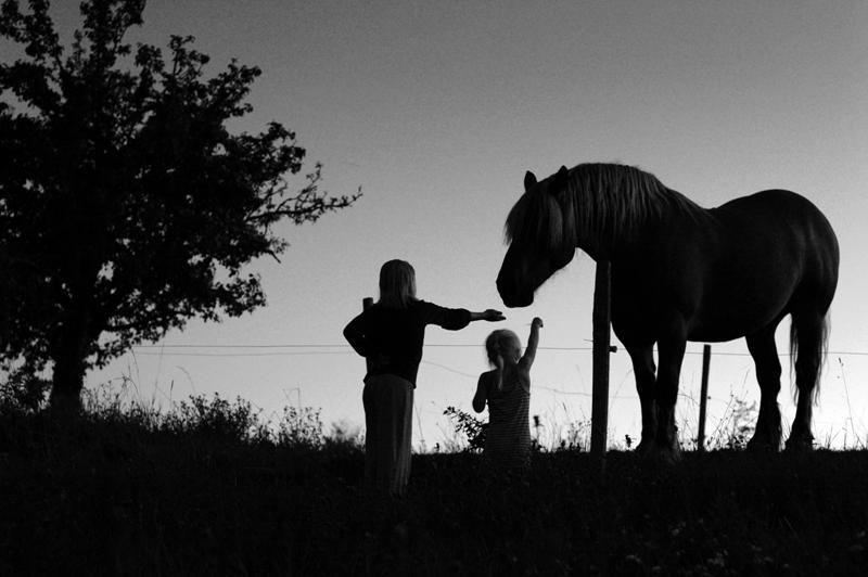 Rencontre avec Bertrand 'Enzo' Ansel - Photographe