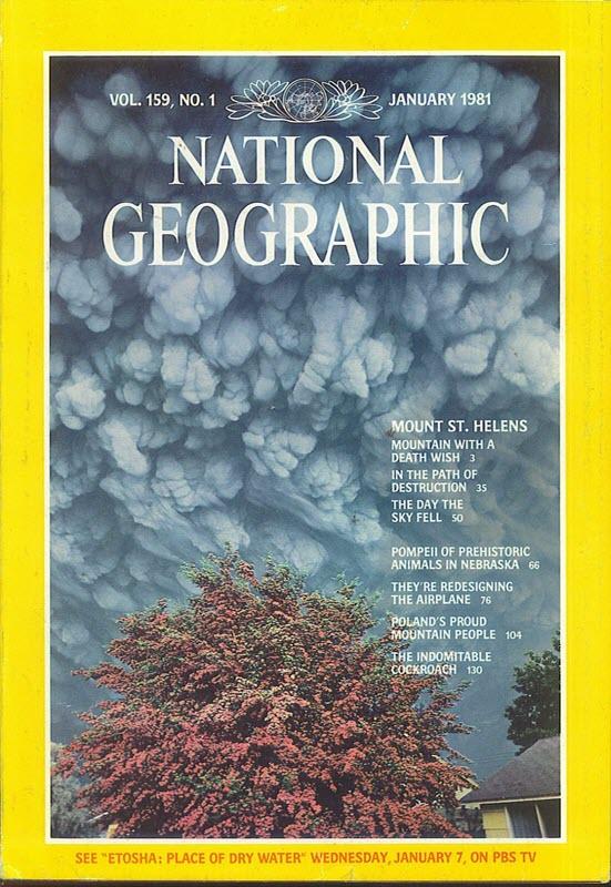 National geographic janvier 1981 éruption mont st-hélène robert landsberg