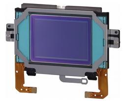 Système anti poussiere du Canon EOS-1D X