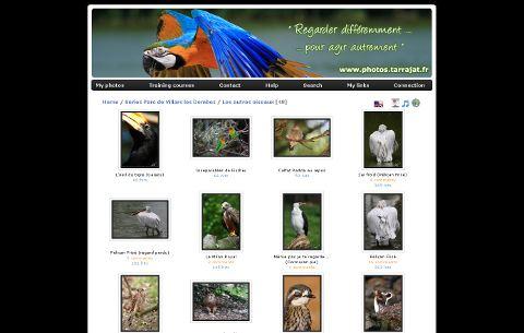 Piwigo 2.4 : 60 nouvelles fonctionnalités pour votre galerie photo en ligne