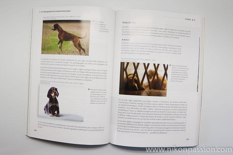 Zoom sur la photo animalière, 2ème édition - Cédric Girard