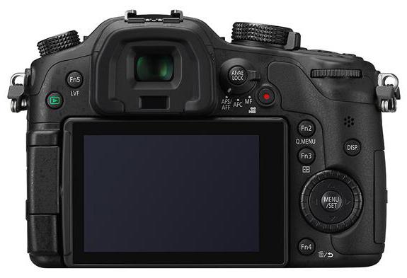 Panasonic Lumix GH3 vu de dos
