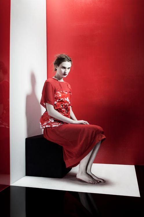 Alexandra Taupiac - Mention spéciale 2012 Prix Picto de la Jeune Photographie de Mode