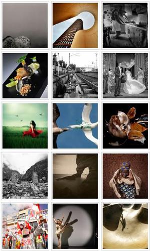Finalistes des Photographies de l'Année 2013