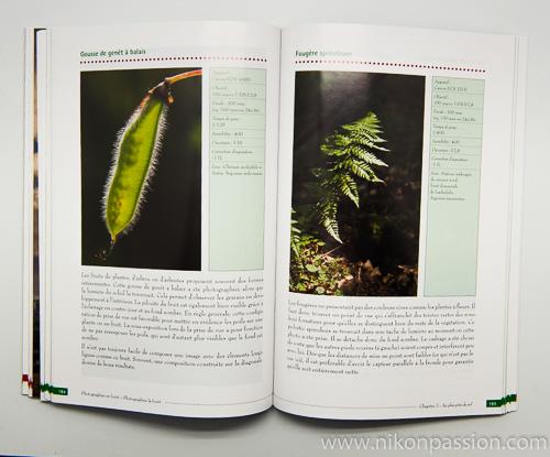 Photographier la forêt, photographier en forêt : initiation à la prise de vue, méthode et guide pratique