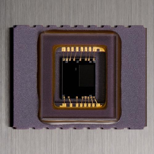 Nikon D5300 : 24Mp, GPS et Wi-Fi intégrés, écran orientable, Expeed 4, sans filtre passe-bas : capteur