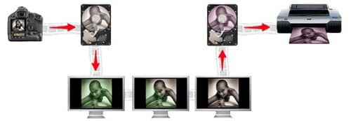 Tutoriel photo : tout savoir sur la gestion des couleurs en photo numérique