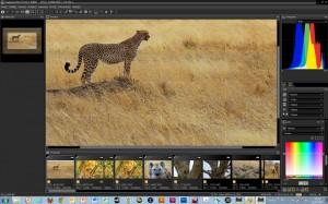 Nikon Capture NX-D - logiciel photo