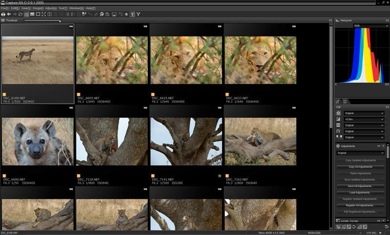 nikon_capture_NX-D_navigateur_fichiers.jpg