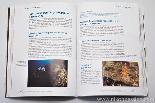 Les secrets de la photo sous-marine : technique, esthétique, créativité