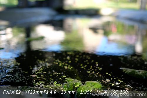 Des photos du Fujinon 23mm f/1.4