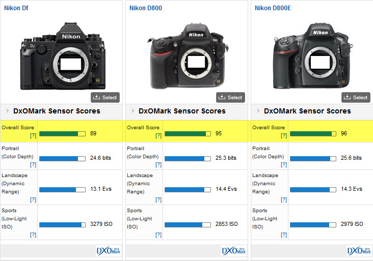 Comparaison Nikon DF - Nikon D800 - Nikon D800E : quel capteur choisir ?