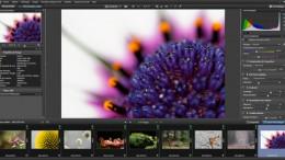 tutoriel_dxo_optics_pro_photo_nature_01.jpg