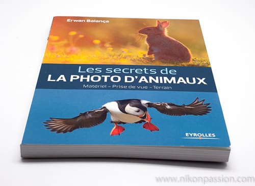 Les secrets de la photo d'animaux, par Erwan Balança