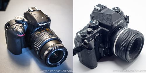 7 bonnes raisons d'utiliser un objectif à focale fixe 50mm