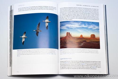 La composition en photographie : 24 conseils pour faire de meilleures photos sans changer de matériel