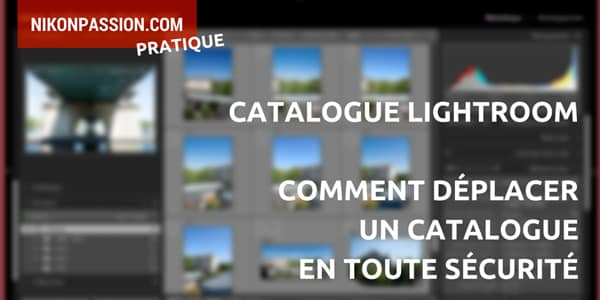 comment-deplacer-catalogue-lightroom.jpg