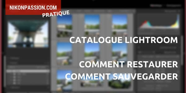 Comment sauvegarder un catalogue Lightroom