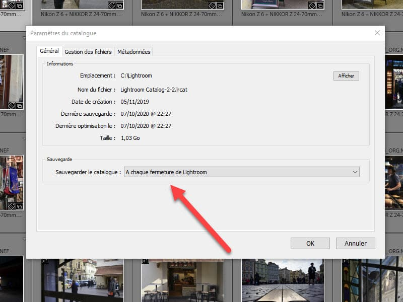 Comment faire la Sauvegarde du catalogue Lightroom