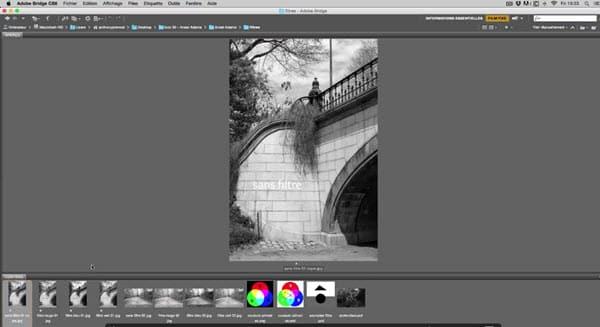 comment-utiliser-les-filtres-de-couleur-pour-convertir-une-photo-en-noir-et-blanc.jpg