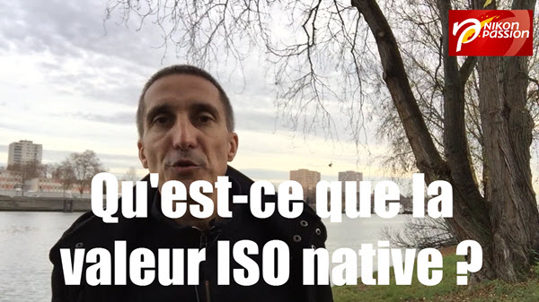 iso-native-valeur-definition.jpg
