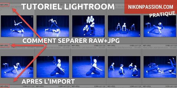 lightroom-separer-raw-nef-jpg-apres-import.jpg