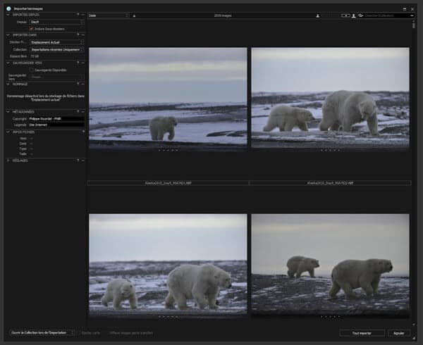 Tutoriel Capture One Pro C1Pro en français