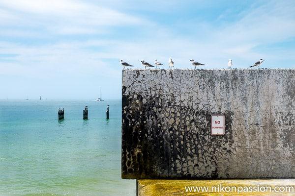 Photographie de paysage : Key West Floride