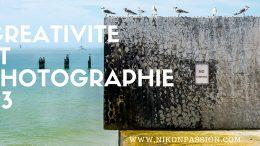 Photographie et Créativité : réflexes instinctifs