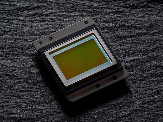 Capteur nikon d7500 ou nikon D500 - comparatif