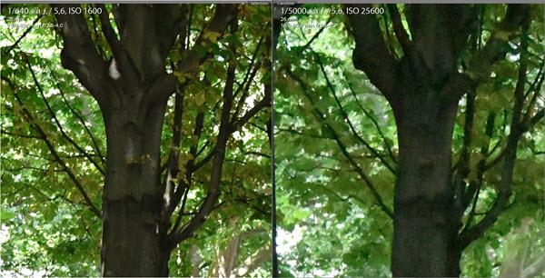 Test Nikon D7500 comparaison 1600 - 25600 ISO