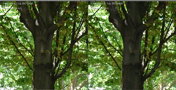 Test Nikon D7500 comparaison 1600 - 6400 ISO