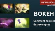 Comment faire un bokeh : principe et exemples