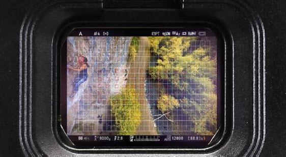 la visée électronique paramétrable des Nikon Z6 et Z7