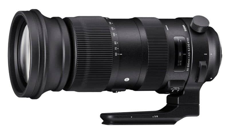 Sigma 60-600mm f/4.5-6.3 DG OS HSM : l'hyper télézoom pour Nikon F