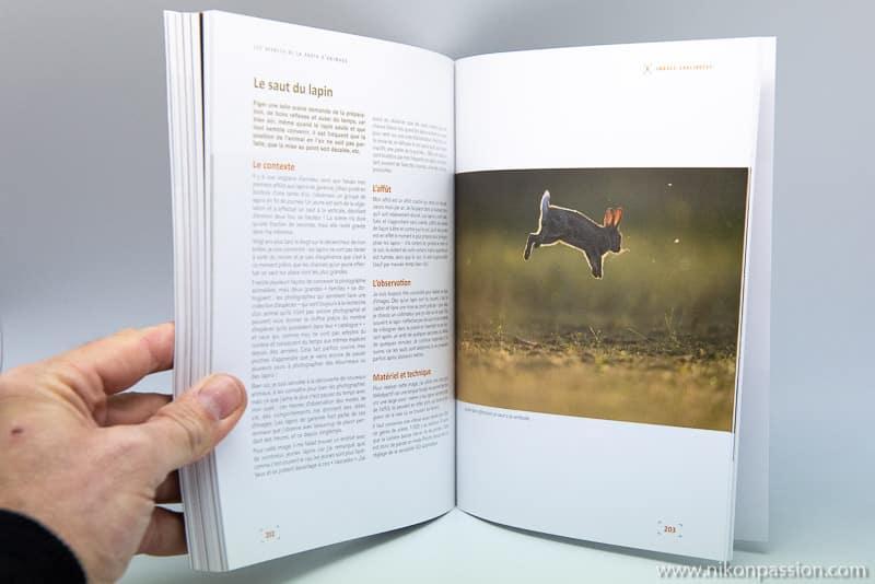 Les secrets de la photo d'animaux : matériel, prise de vue, approche terrain par Erwan Balança
