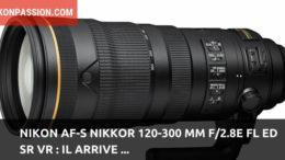 Nikon AF-S NIKKOR 120-300 mm f/2.8E FL ED SR VR