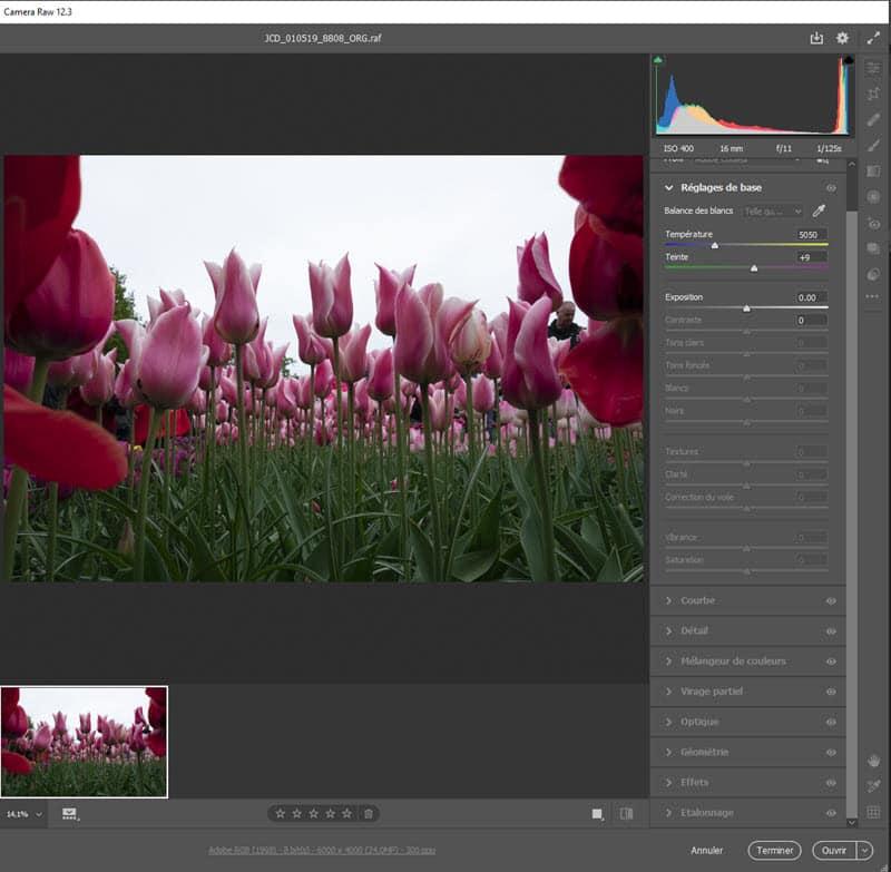 Ouvrir un fichier RAW dans Photoshop avec Camera Raw