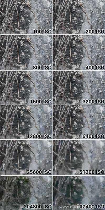Test sensibilité ISO capteur du Nikon Z 50